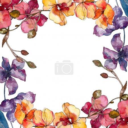 Photo pour Fleurs botaniques florales d'orchidée. Fleur sauvage de neige sauvage de feuille de source d'isolement. Ensemble d'illustration de fond d'aquarelle. Aquarelle de mode de dessin d'aquarelle d'aquarelle d'aquarelle. Carré d'ornement de bordure de cadre. - image libre de droit