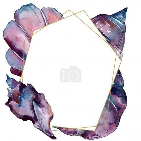 Photo pour Éléments tropicaux de coquillage de plage d'été. Ensemble d'illustration de fond d'aquarelle. Aquarelle de mode de dessin d'aquarelle d'aquarelle d'aquarelle. Carré d'ornement de cristal de bordure de cadre. - image libre de droit