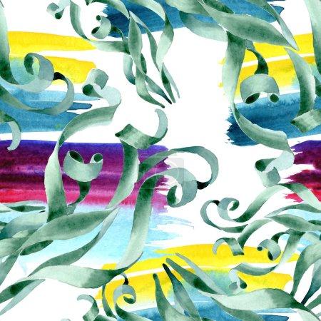 Photo pour Fleurs botaniques florales succulentes vertes. Feuille de printemps sauvage fleur sauvage. Ensemble d'illustration aquarelle. Aquarelle dessin mode aquarelle. Modèle de fond sans couture. Texture d'impression papier peint tissu . - image libre de droit