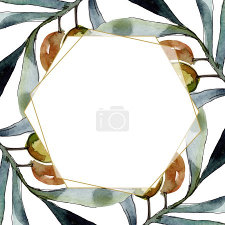 Photo for Olive branch with black and green fruit. Watercolor background illustration set. Watercolour drawing fashion aquarelle isolated. Frame border ornament square. - Royalty Free Image