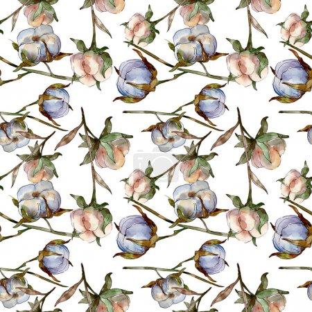 Photo pour Fleurs botaniques florales en coton blanc. Ensemble d'illustration aquarelle. Modèle de fond sans couture. Texture d'impression papier peint . - image libre de droit