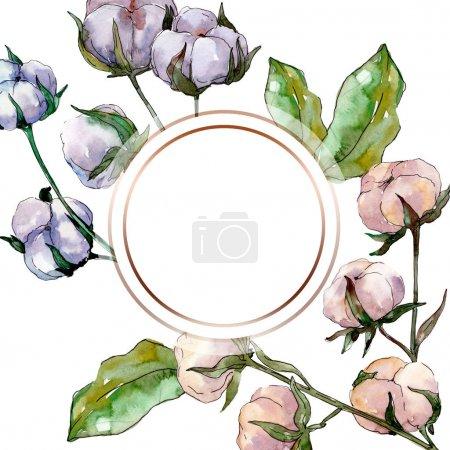 Foto de Flor de botánica floral de algodón. Wildflower de hoja de primavera salvaje aislado. Conjunto de ilustración de fondo de acuarela. Acuarela dibujo moda aquarelle aislado. Plaza de ornamento de frontera marco. - Imagen libre de derechos