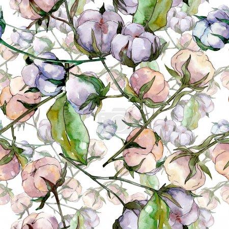 Photo pour Fleur botanique florale de coton. Fleur sauvage sauvage de feuille de source. Ensemble d'illustration d'aquarelle. Aquarelle de dessin à l'aquarelle. Modèle de fond sans couture. Texture d'impression de papier peint de tissu. - image libre de droit
