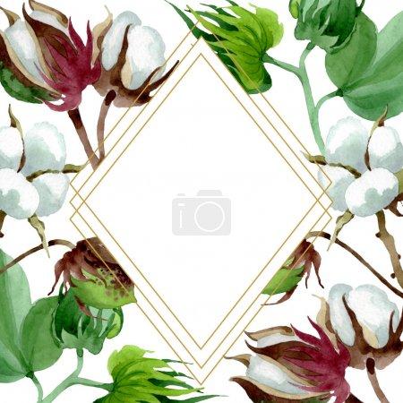 Photo pour Fleur botanique florale de coton blanc. Fleur sauvage de neige sauvage de feuille de source d'isolement. Ensemble d'illustration de fond d'aquarelle. Aquarelle de dessin à l'aquarelle. Carré d'ornement de bordure de cadre. - image libre de droit