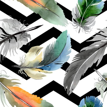 Pluma colorida de pájaro de ala aislada. Conjunto de ilustración de fondo acuarela. Patrón de fondo sin costuras .