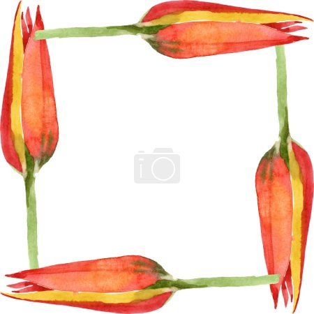 Photo for Orange tulip floral botanical flower. Wild spring leaf wildflower isolated. Watercolor background illustration set. Watercolour drawing fashion aquarelle isolated. Frame border ornament square. - Royalty Free Image
