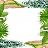 """Постер, картина, фотообои """"Пальмовое пляжное дерево покидает джунгли ботанические. Набор фоновых иллюстраций акварели. Рама границы орнамент площади."""""""
