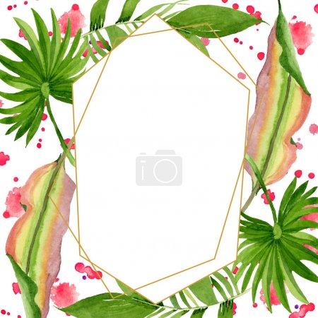 Photo pour Été tropical hawaïen exotique. L'arbre de plage de palmier laisse la jungle botanique. Ensemble d'illustration de fond d'aquarelle. Aquarelle de dessin à l'aquarelle. Carré d'ornement de cristal de bordure de cadre. - image libre de droit