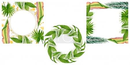 Foto de Exótico verano hawaiano tropical. Palmera árbol de playa deja botánico selva. Conjunto de ilustraciones de fondo de acuarela. Acuarela dibujando moda acuarela. Marco borde cristal ornamento cuadrado. - Imagen libre de derechos
