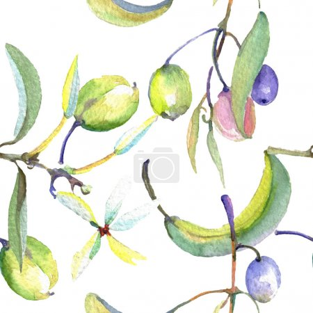Photo for Olive branch with black and green fruit. Watercolor background illustration set. Watercolour drawing fashion aquarelle isolated. Seamless background pattern. Fabric wallpaper print texture. - Royalty Free Image