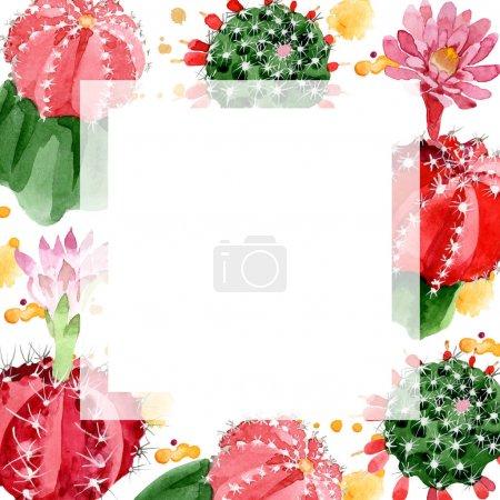 Photo pour Cactus rouges et verts isolés sur cadre d'illustration aquarelle blanche avec espace de copie - image libre de droit