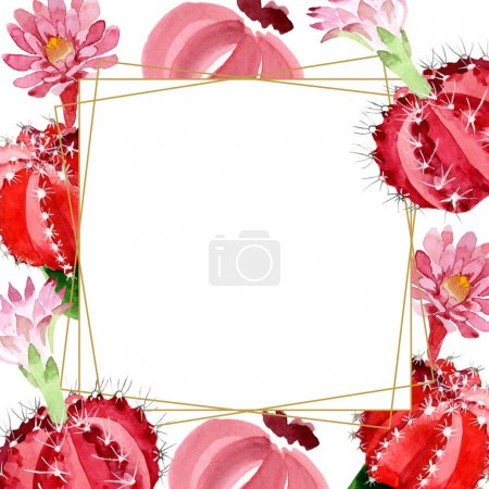 Photo for Red and green cacti isolated on white watercolor illustration frame with copy space - Royalty Free Image