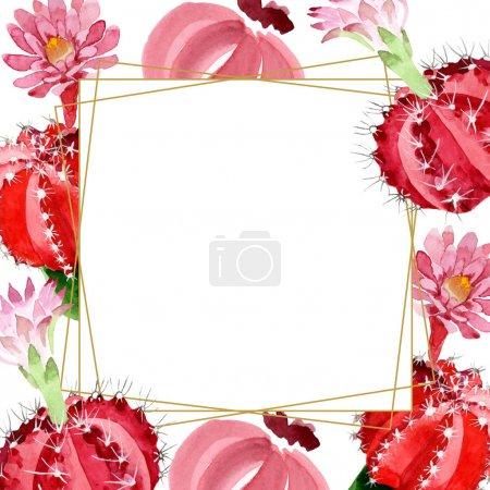 Photo pour Cactus rouges et verts isolés sur le cadre blanc d'illustration d'aquarelle avec l'espace de copie - image libre de droit