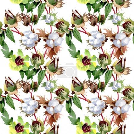 Photo pour Fleurs botaniques florales en coton. Feuille de printemps sauvage fleur sauvage. Ensemble d'illustration aquarelle. Aquarelle dessin mode aquarelle. Modèle de fond sans couture. Texture d'impression papier peint tissu . - image libre de droit