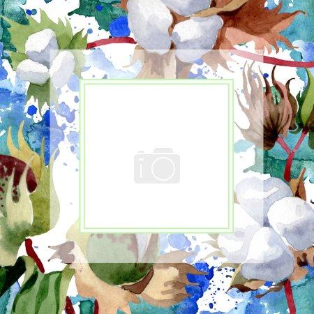 Photo pour Fleurs botaniques florales en coton. Feuille sauvage de printemps fleur sauvage isolée. Ensemble d'illustration de fond aquarelle. Aquarelle dessin mode aquarelle isolé. Cadre bordure ornement carré . - image libre de droit