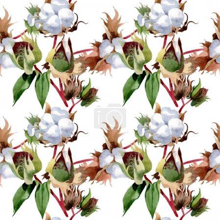 Foto de Flores botánicas florales de algodón. Flor silvestre de la hoja de primavera wildflower. Conjunto de ilustraciones de acuarela. Acuarela dibujando moda acuarela. Patrón de fondo sin costuras. Textura de impresión de fondo de pantalla de tela. - Imagen libre de derechos