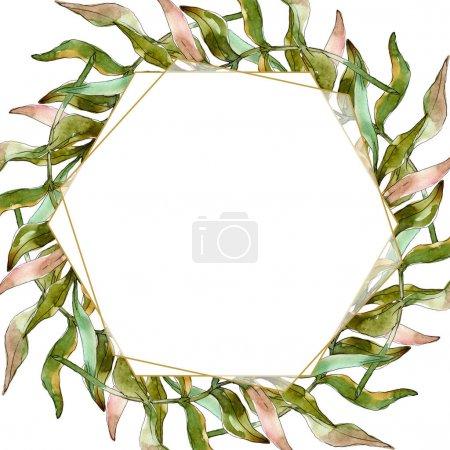 Photo pour Été tropical hawaïen exotique. L'arbre de plage de palmier laisse des feuilles botaniques de jungle. Ensemble d'illustration de fond d'aquarelle. Aquarelle de mode de dessin d'aquarelle d'aquarelle d'aquarelle. Carré d'ornement de bordure de cadre. - image libre de droit