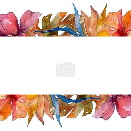 Photo pour Été tropical hawaïen exotique. L'arbre de plage de palmier laisse la fleur botanique de jungle. Ensemble d'illustration de fond d'aquarelle. Aquarelle de mode de dessin d'aquarelle d'aquarelle d'aquarelle. Carré d'ornement de bordure de cadre. - image libre de droit