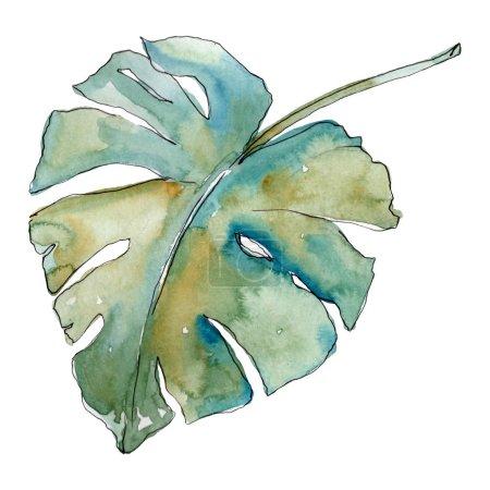 Photo pour Été hawaïen tropical exotique. Palm plage arbre feuilles jungle botanique. Ensemble d'illustration de fond aquarelle. Aquarelle dessin mode aquarelle isolé. Feuilles isolées élément d'illustration . - image libre de droit