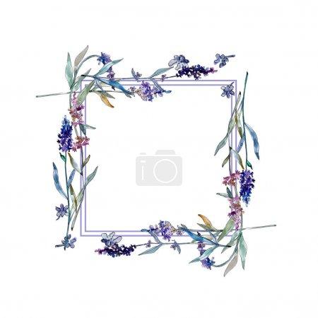 Foto de Lavanda flores botánicas florales. Flor silvestre de hoja de primavera aislada. Conjunto de ilustración de fondo acuarela. Acuarela dibujo moda acuarela aislado. Marco borde ornamento cuadrado . - Imagen libre de derechos