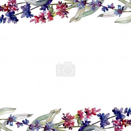 Foto de Flores botánicas florales de lavanda. Hoja de primavera silvestre wildflower aislado. Conjunto de ilustraciones de fondo de acuarela. Acuarela dibujando moda acuarela. Marco borde ornamento cuadrado. - Imagen libre de derechos