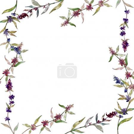 Foto de Flores botánicas florales de lavanda púrpura. Hoja de primavera silvestre wildflower aislado. Conjunto de ilustraciones de fondo de acuarela. Acuarela dibujando moda acuarela aislada. Marco borde ornamento cuadrado. - Imagen libre de derechos