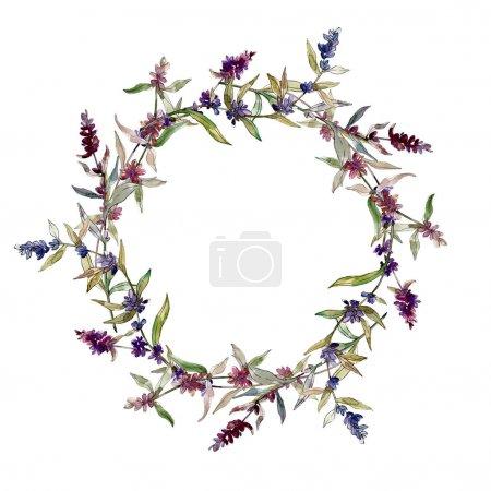 Photo pour Fleurs botaniques florales violettes lavande. Feuille sauvage de printemps fleur sauvage isolée. Ensemble d'illustration de fond aquarelle. Aquarelle dessin mode aquarelle isolé. Cadre bordure ornement carré . - image libre de droit