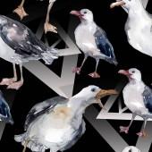 """Постер, картина, фотообои """"Чайка небесной птицы в дикой природе. Дикая свобода, птица с летающими крыльями. Набор иллюстраций акварели. Акварель рисунок моды акварели. Бесшовный фоновый шаблон. Ткань обои печати текстуры."""""""