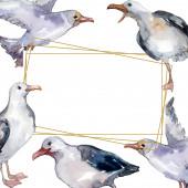 """Постер, картина, фотообои """"Чайка небесной птицы в дикой природе. Дикая свобода, птица с летающими крыльями. Набор фоновых иллюстраций акварели. Акварель рисунок моды акварели изолированы. Рама границы орнамент площади."""""""