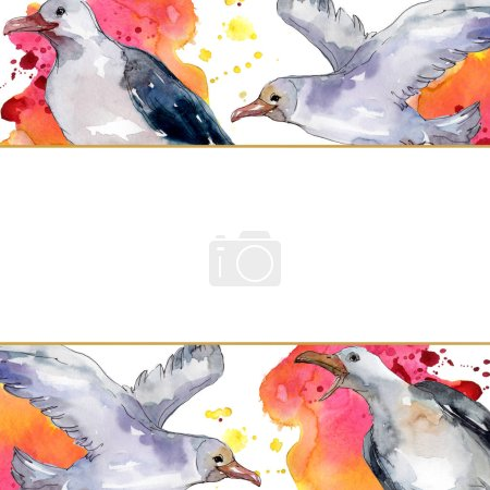 Photo pour Ciel oiseau mouette dans une faune sauvage. Liberté sauvage, oiseau aux ailes volantes. Ensemble d'illustration de fond aquarelle. Aquarelle dessin mode aquarelle isolé. Cadre bordure ornement carré . - image libre de droit