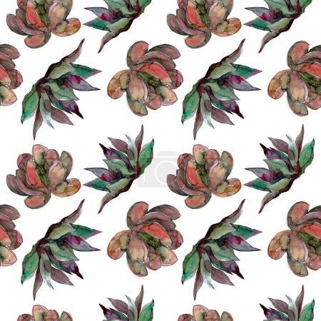 Photo pour Fleurs botaniques florales succulentes. Feuille de printemps sauvage fleur sauvage. Ensemble d'illustration aquarelle. Aquarelle dessin mode aquarelle. Modèle de fond sans couture. Texture d'impression papier peint tissu . - image libre de droit