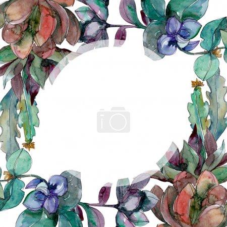Photo pour Fleurs botaniques florales succulentes. Feuille sauvage de printemps fleur sauvage isolée. Ensemble d'illustration de fond aquarelle. Aquarelle dessin mode aquarelle isolé. Cadre bordure ornement carré . - image libre de droit