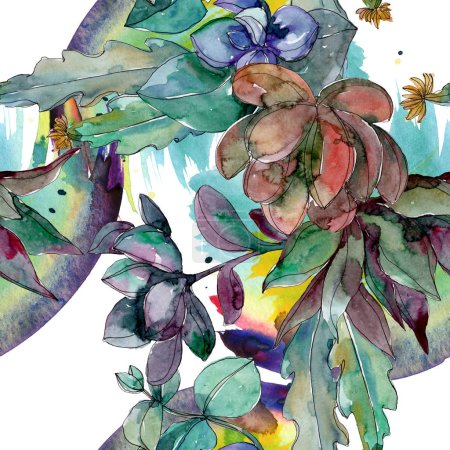 Foto de Suculentas flores botánicas florales. Flor silvestre de hoja de primavera. Juego de ilustración en acuarela. Acuarela dibujo moda aquarelle. Patrón de fondo sin costuras. Textura de impresión de papel pintado de tela . - Imagen libre de derechos