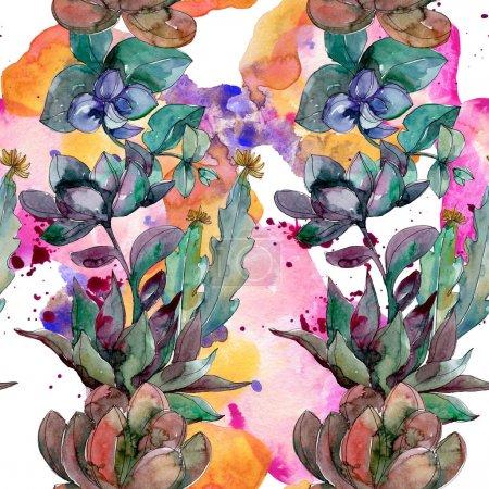Photo pour Succulents fleurs botaniques florales. Fleur sauvage sauvage de feuille de source. Ensemble d'illustration d'aquarelle. Aquarelle de dessin à l'aquarelle. Modèle de fond sans couture. Texture d'impression de papier peint de tissu. - image libre de droit