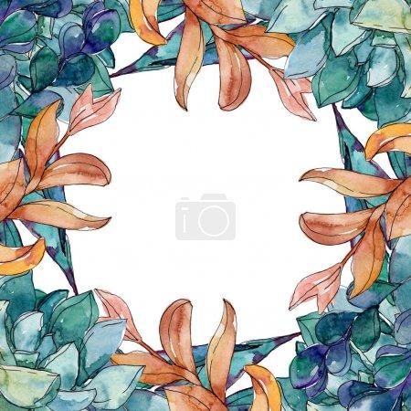 Photo pour Succulents fleurs botaniques florales. Fleur sauvage de neige sauvage de feuille de source d'isolement. Ensemble d'illustration de fond d'aquarelle. Aquarelle de mode de dessin d'aquarelle d'aquarelle d'aquarelle. Carré d'ornement de bordure de cadre. - image libre de droit