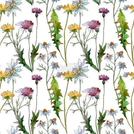 Photo pour Fleurs sauvages fleurs botaniques florales. Feuille de printemps sauvage fleur sauvage. Ensemble d'illustration aquarelle. Aquarelle dessin mode aquarelle. Modèle de fond sans couture. Texture d'impression papier peint tissu . - image libre de droit