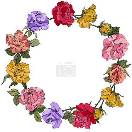 Illustration for Vector Roses. Floral botanical flowers. Red, pink and purple engraved ink art. Frame border ornament wreath. - Royalty Free Image