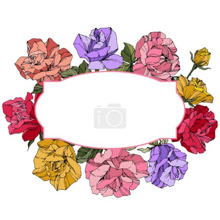 Vector Roses. Floral botanical flowers. Red, pink and purple engraved ink art. Frame border ornament wreath.