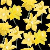 """Постер, картина, фотообои """"Вектор Нарцисс цветы. Гравированные желтые чернила искусство. Бесшовный фон узор. Тканевые обои печать текстур на черном фоне."""""""