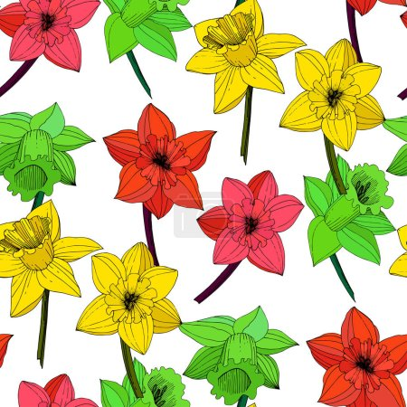 Illustration for Vector Narcissus flowers. Red, yellow and green engraved ink art. Seamless background pattern. Fabric wallpaper print texture on white background. - Royalty Free Image
