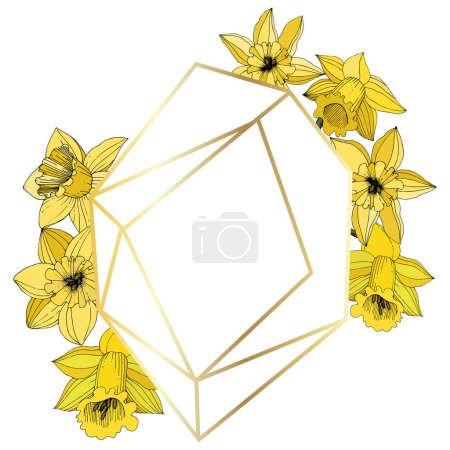 Vector Narcissus flowers. Yellow engraved ink art. Frame border ornament on white background polyhedron mosaic shape.