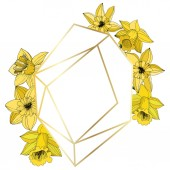 Vector Narcissus flowers Yellow engraved ink art Frame border ornament on white background polyhedron mosaic shape
