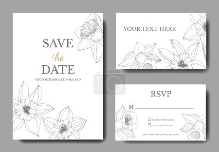 Illustration for Vector Narcissus flowers. Wedding cards with floral decorative borders. Black and white engraved ink art. Thank you, rsvp, invitation elegant cards illustration graphic set banners. - Royalty Free Image