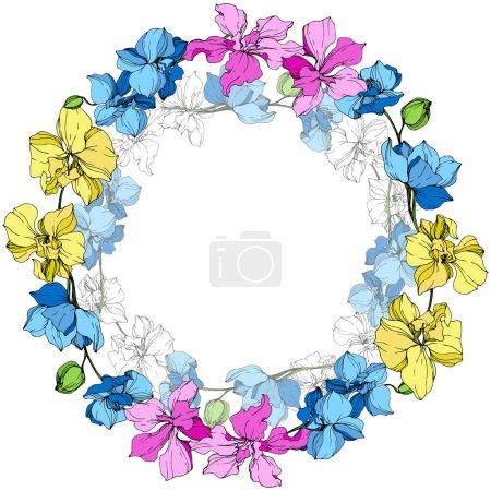 Illustration pour Orchidées jaunes, bleues et roses. Encre gravée. Cadre couronne florale sur fond blanc . - image libre de droit