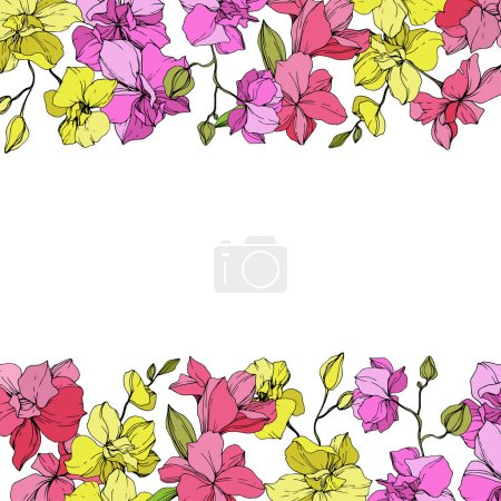 Illustration for Beautiful pink and yellow orchid flowers. Engraved ink art. Floral borders on white background. - Royalty Free Image