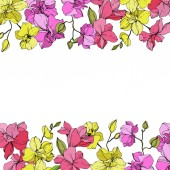 Beautiful pink and yellow orchid flowers Engraved ink art Floral borders on white background