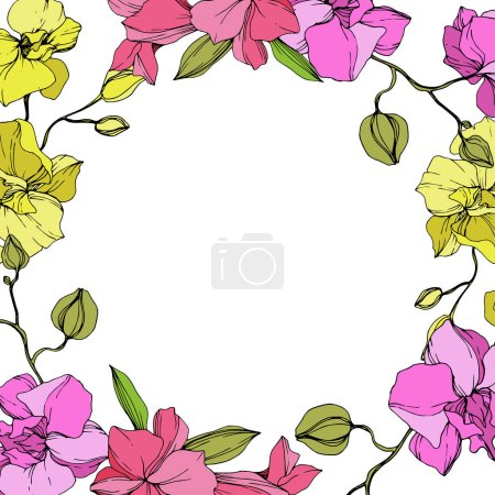 Beautiful pink and yellow orchid flowers. Engraved ink art. Frame floral wreath on white background.