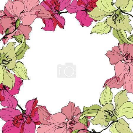 Illustration for Beautiful pink and yellow orchid flowers. Engraved ink art. Frame floral wreath on white background. - Royalty Free Image