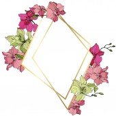 Beautiful pink and yellow orchid flowers Engraved ink art Frame golden crystal on white background