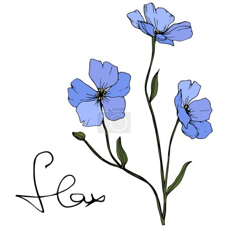 Illustration for Beautiful blue flax flowers with green leaves isolated on white. Engraved ink art. - Royalty Free Image